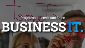 Program business IT